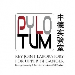 Logo PYLOTUM
